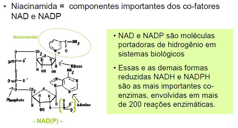 niacinamida2