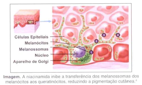 niacinamida7a